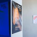 Plisskën Festival 2012 | Posters
