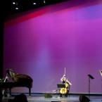 Wim Mertens Trio