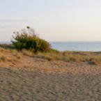 Παραλία Ζαχάρως